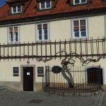 400-Jahre alte Weinrebe in Maribor am Lend